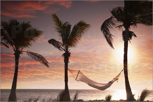 Angelo Cavalli - Hammock on the beach, Florida