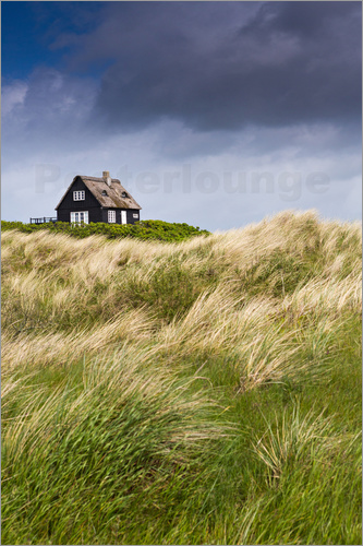 Poster Cottage in the dunes during storm