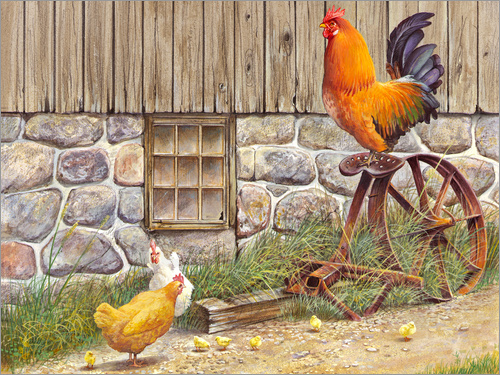 John Bindon - King Rooster and Hens