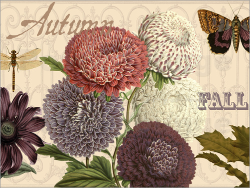 Poster Autumn flowers