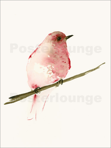 Poster Rasberry red bird