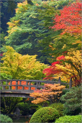 Don Paulson - Wooden bridge at the Japanese Garden