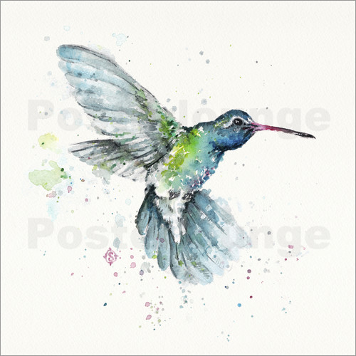 Poster Hummingbird Flurry