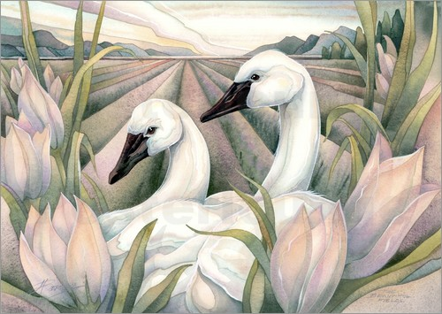 Jody Bergsma - I have found the one