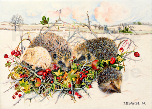 Poster Hedgehogs in Hedgerow Basket