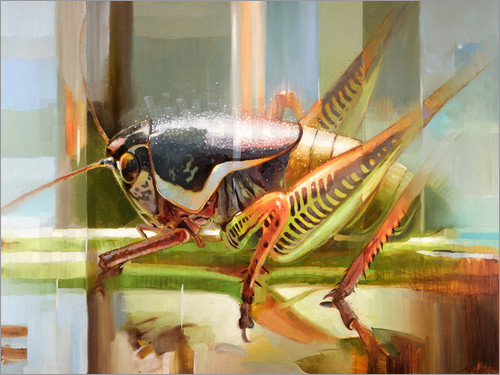 Johnny Morant - Ionian cricket 2
