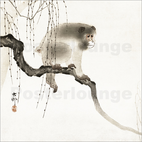 ohara koson japanese macaque on a tree poster posterlounge. Black Bedroom Furniture Sets. Home Design Ideas
