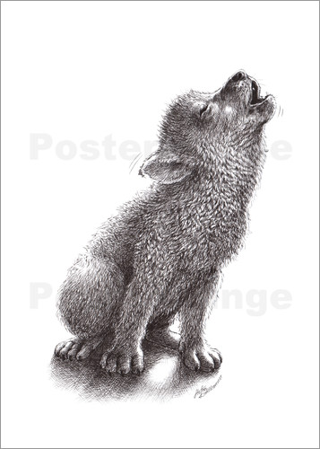 Poster Young Howling Wolf