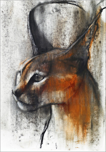 Mark Adlington - Caracal Profile