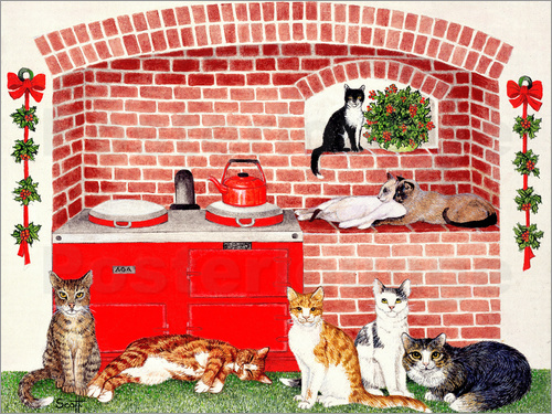 Pat Scott - Cats in the kitchen