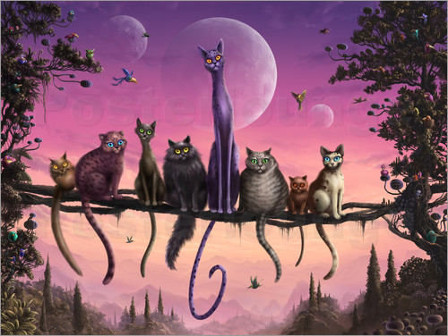 Susi H. - Cats in heaven