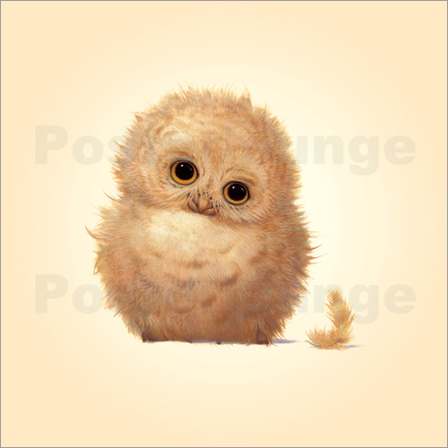 Poster Owlet