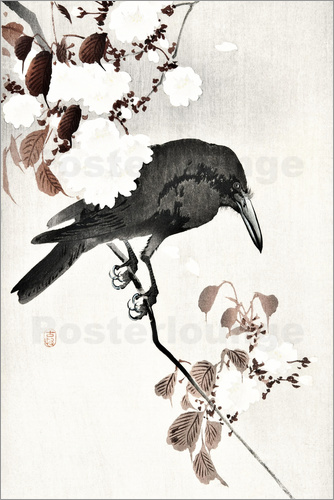 Ohara Koson - Crow and Cherry Blossoms