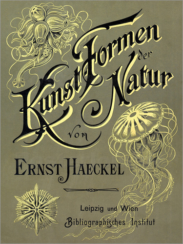 Ernst Haeckel - Art forms of nature