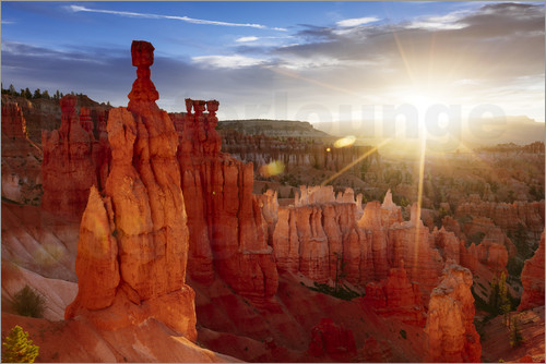 Matteo Colombo - Landscape: beautiful sunrise at Bryce canyon, Utah, USA