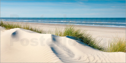Poster Langeoog seascape with dunes and fine beach grass