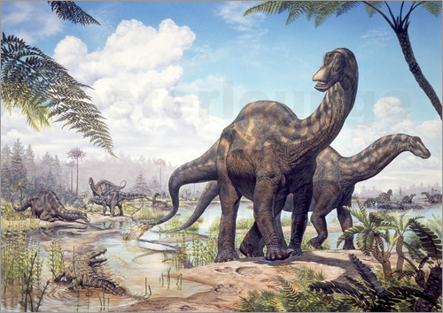 Mark Hallett - Large Dicraeosaurus sauropods from the Late Cretaceous of Africa..