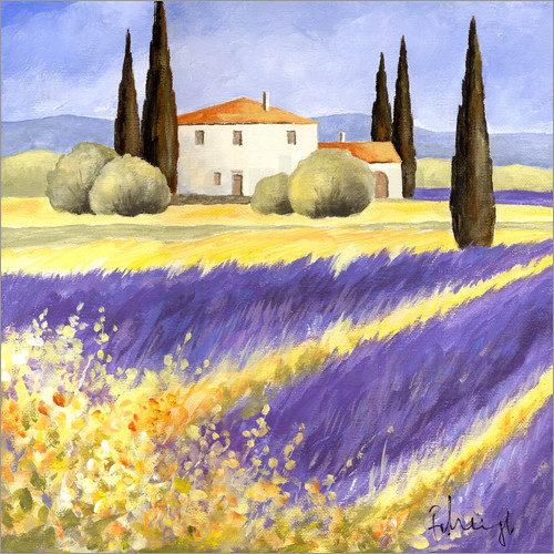 Franz Heigl - Light of Provence