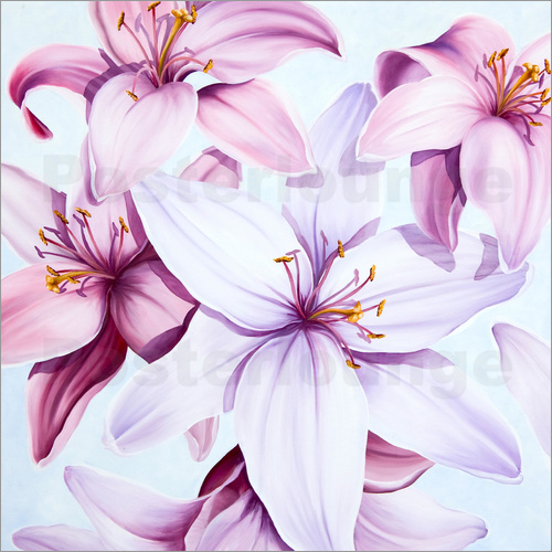 Poster Lilies 3