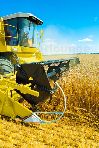 Poster Combine harvester at work