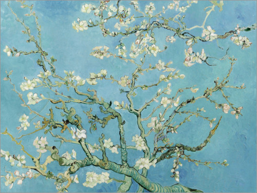 Poster almond blossom