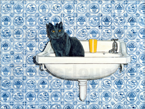 Ditz - My Bathroom Cat