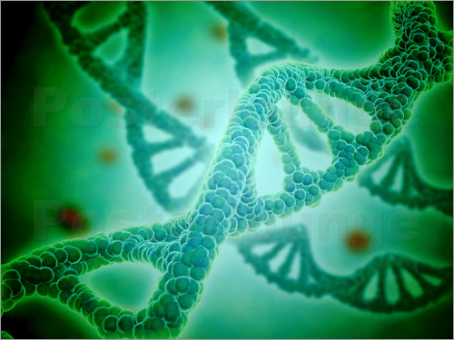 Stocktrek Images - Microscopic view of DNA
