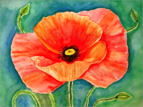 Poster Poppy flower painting watercolor