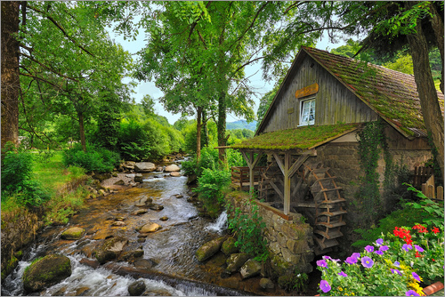 Fine Art Images - Mill in the black forest
