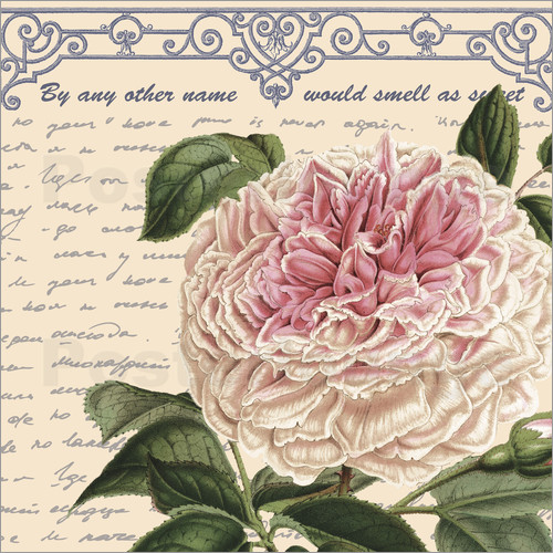 Poster Name of the Rose