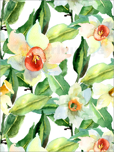 Poster Daffodils in watercolor