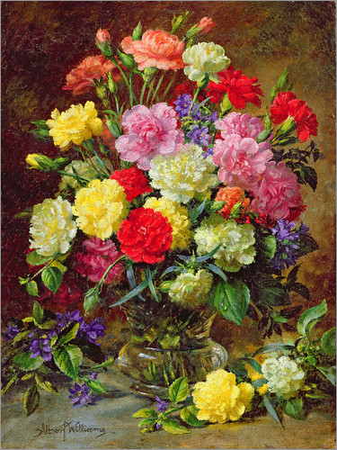 Albert Williams - Carnations of Radiant Colours