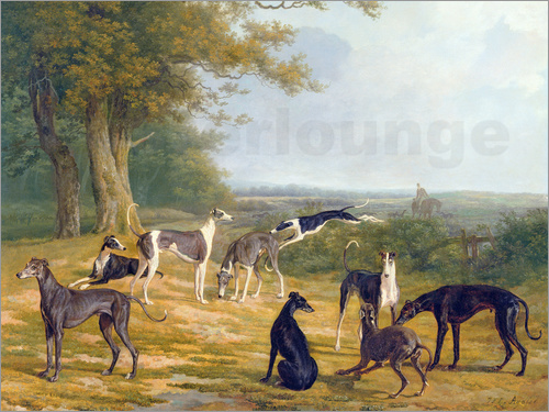 Jacques Laurent Agasse - Nine Greyhounds in a Landscape