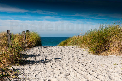 Poster Baltic Sea - path to the beach