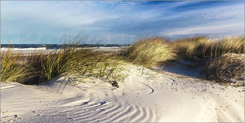 newfrontiers photography - Sand Dunes at the Beach II