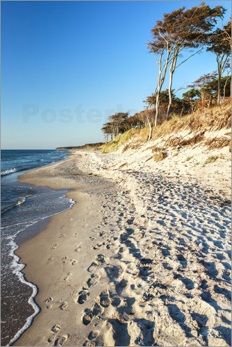 newfrontiers photography - Baltic Sea Beach