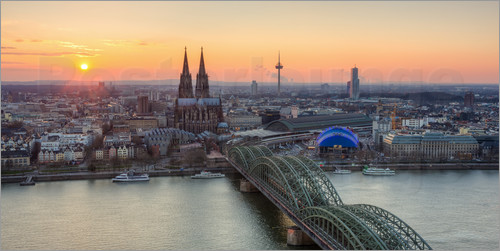 Poster Panorama view of Cologne at sunset
