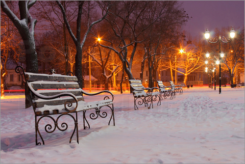 Park bench on a winter morning