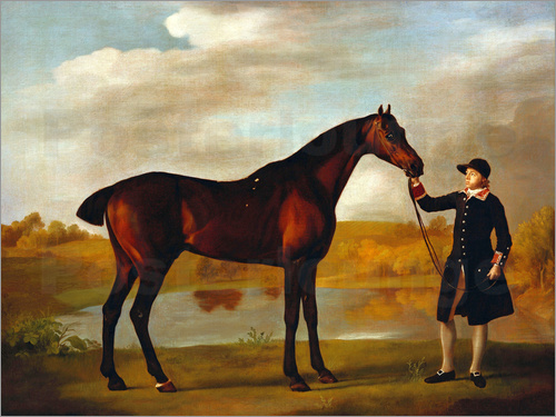 George Stubbs - Horse of the Duke of Marlborough