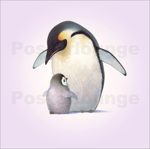 Poster Penguin & Chick