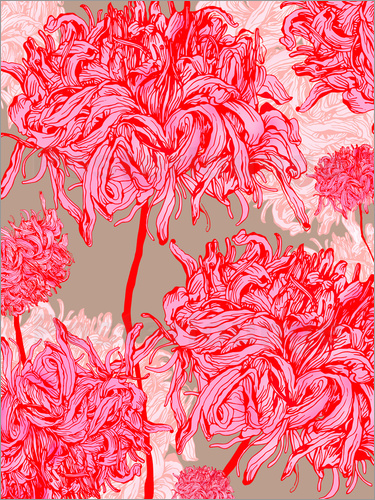 Poster Pretty in pink chrysanthemum
