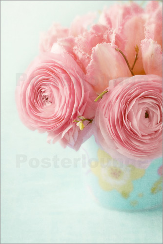 Poster Ranunculus and tulips