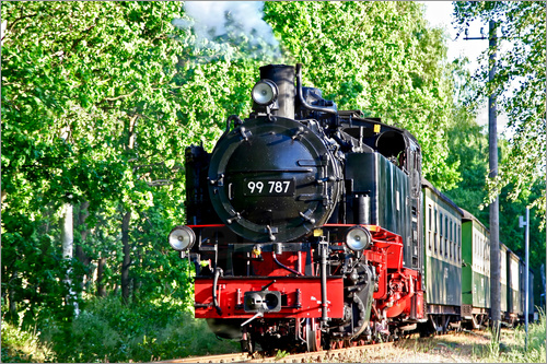 Poster famous train Rasender Roland'