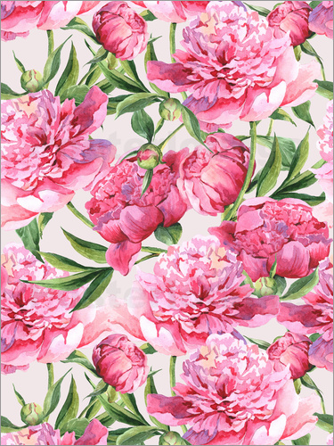 Poster Pink peonies in watercolor