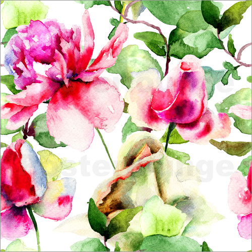 Poster Roses Watercolor