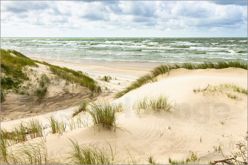 Poster Sand dunes on the Baltic sea