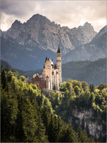 Andreas Wonisch - Neuschwanstein Castle in front of the Alps