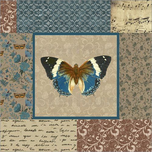 Gail Fraser - Butterfly in the pattern