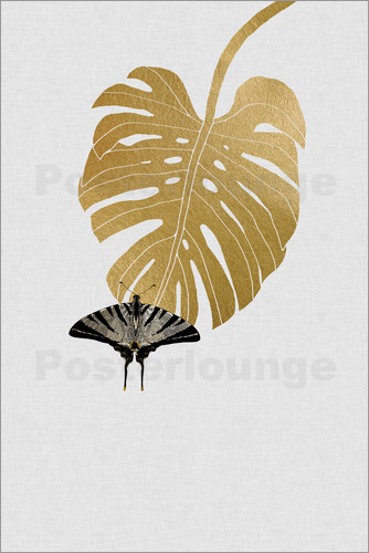 Poster Butterfly & Monstera