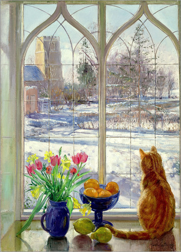 Timothy Easton - Snow Shadows and Cat